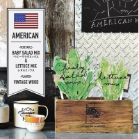 RON/アールオーエヌ UGM AMERICAN VEGETABLE KIT(UGM01001)